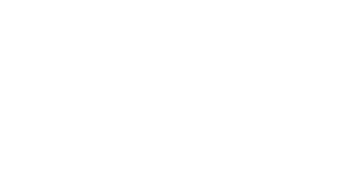 White Diaxion logo